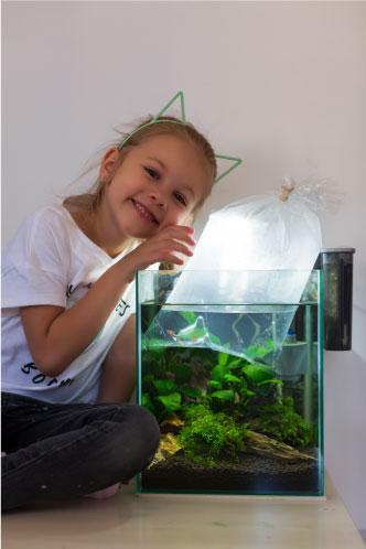 Floating bag in aquarium