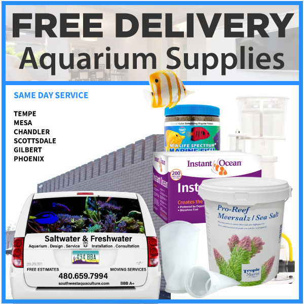 Free delivery of aquarium supplies